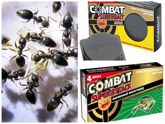 ловушка Combat для муравьёв