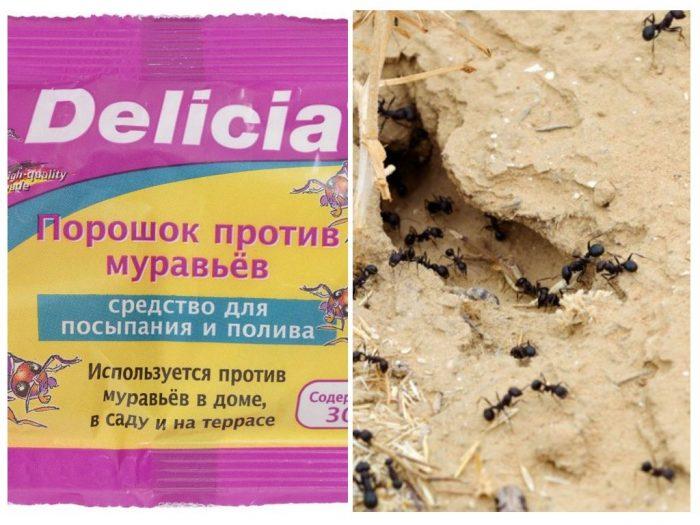 порошок от муравьёв Делиция