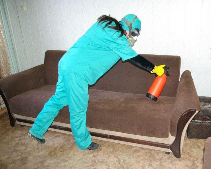 Обрабатывают помещение от насекомых-вредителей