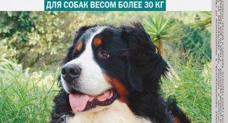 Капли Барс для собак весом от 30 кг