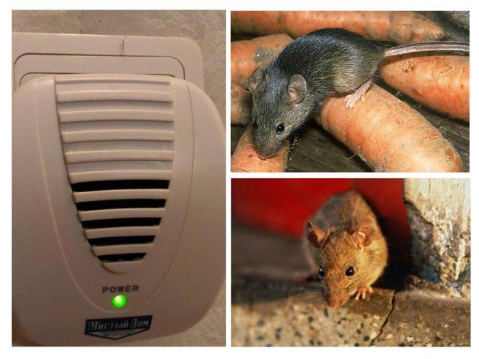 Мыши и ультразвуковое устройство