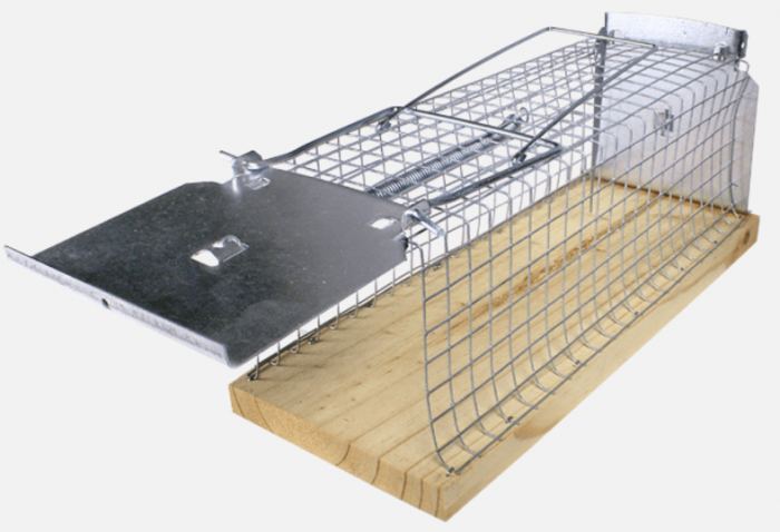 Крысоловка-живоловка Swissinno