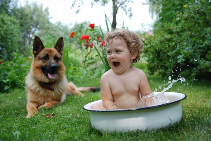 Отдых с детьми и животными