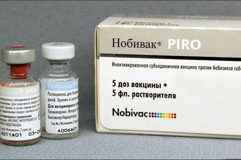 Вакцина Нобивак Пиро