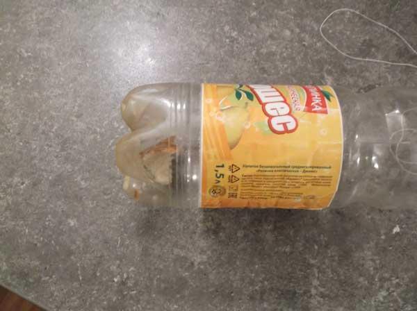 приманка для мышей в пластиковой бутылке
