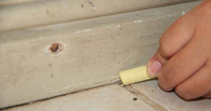 Карандаш (мелок) от муравьёв