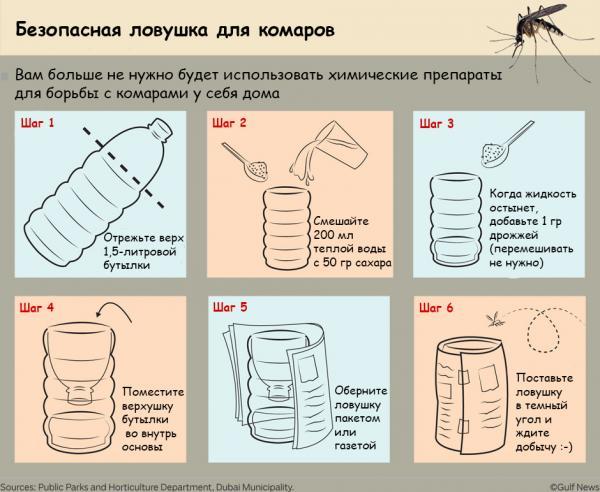 Инструкция по изготовлению ловушки из пластиковой бутылки
