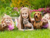 собака и ребенок на природе