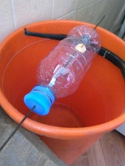 ловушка для мышей из ведра и бутылки