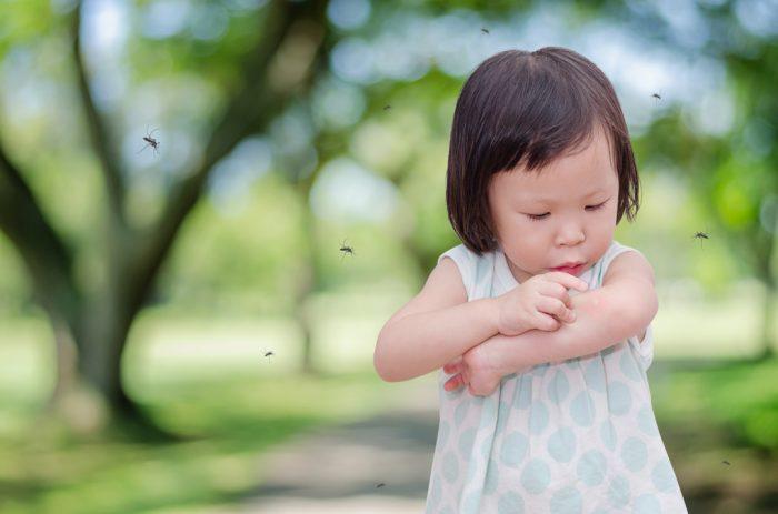 малышка разглядывает место укуса комара