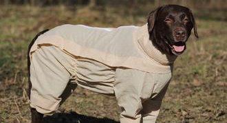 ОССО для собак