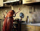 Насекомое на кухне