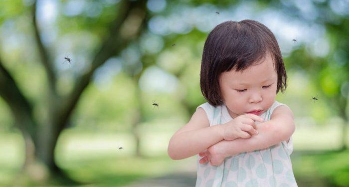 Ребёнок и комары вокруг