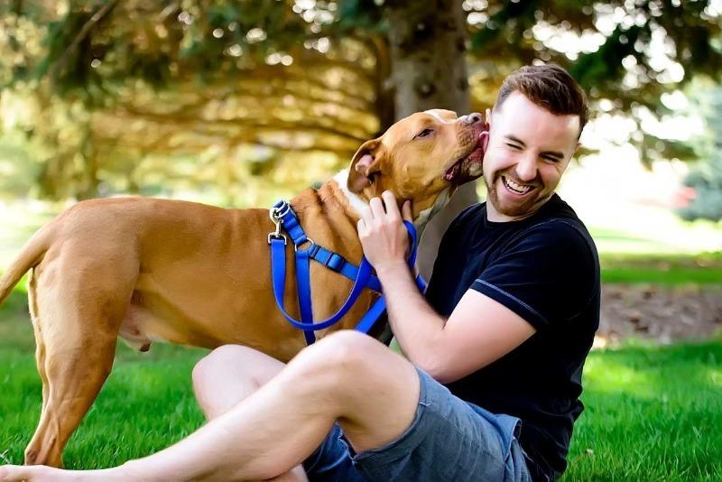 Любит кошек или собак: что расскажет о характере мужчины его любимое домашнее животное