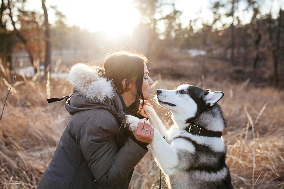 Собака — друг человека: как питомец понимает вас