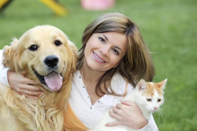 Что означают самые простые русские клички кошек и собак