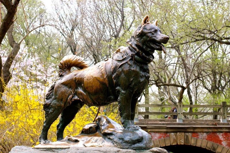 10 интересных памятников животным, о подвигах которых стоит знать всем