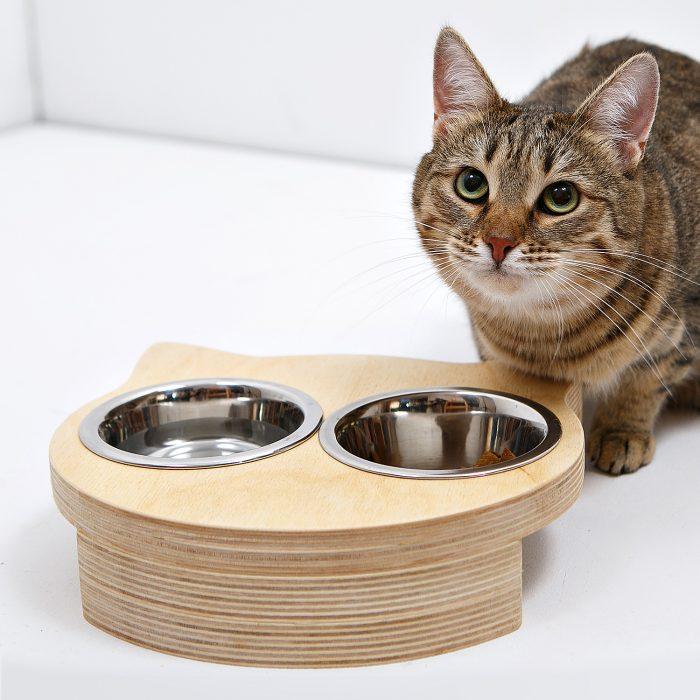 как выбрать миску для кошки