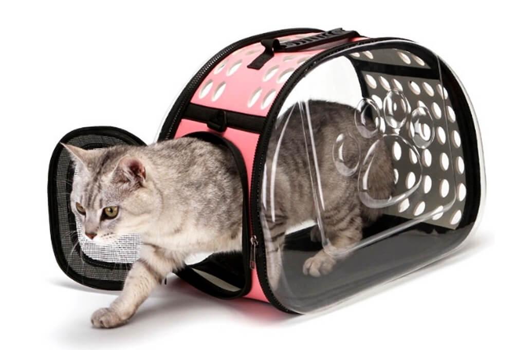 Выбираем переноску для кота