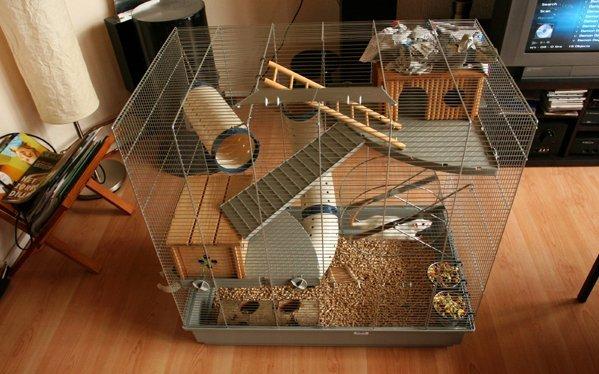 Клетка для декоративной крысы