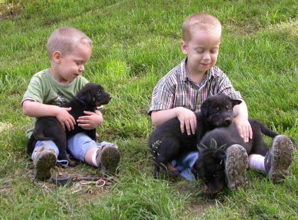 Щенки с детьми